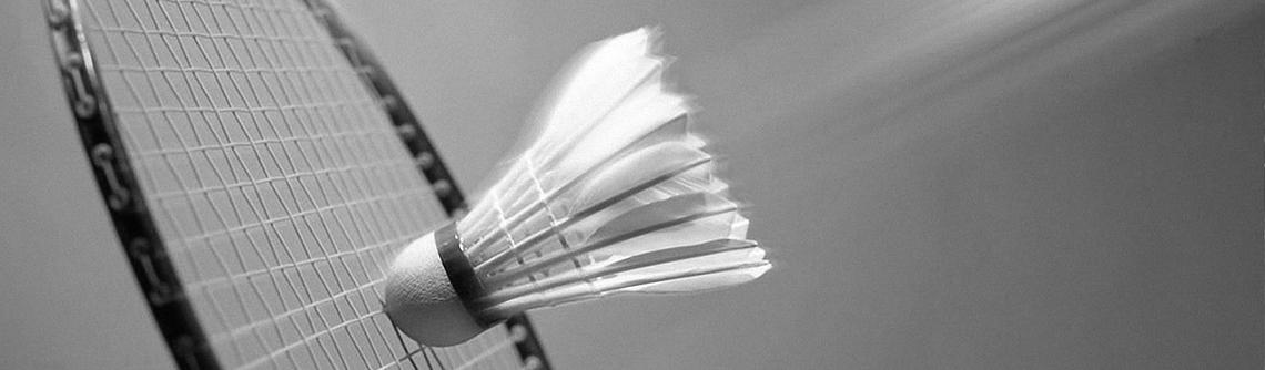 badminton in de fablo tennishal